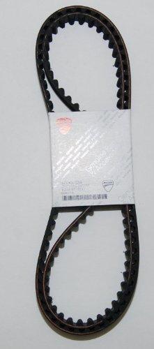 Ducati OEM Timing Belt Hypermotard 796 Monster 659 696 795 796 73740242A Set of 2