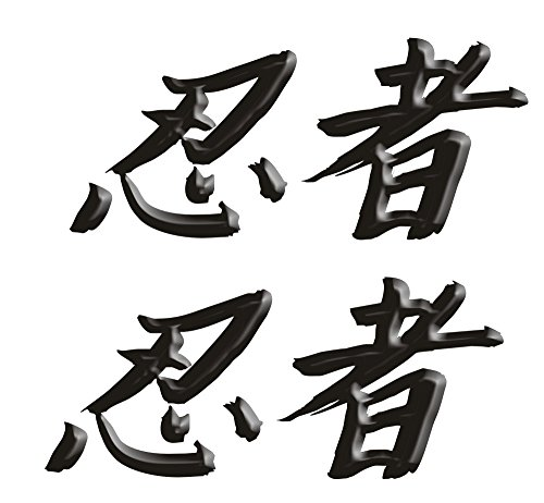 Size is 26 tall x 6 wide Kawasaki Ninja ZX10 ZX12 ZX14 ZX9 ZX6 600 1000 ZX6RR 250R 300 Ninja Kanji Decal sticker set Black