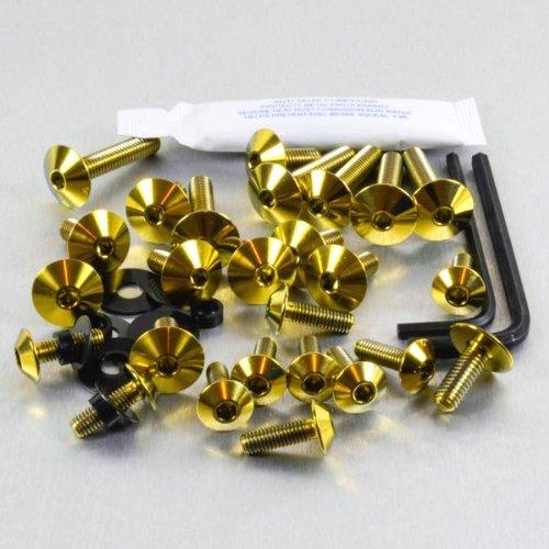 Titanium Fairing Kit Honda CBR1100 XX Blackbird Gold