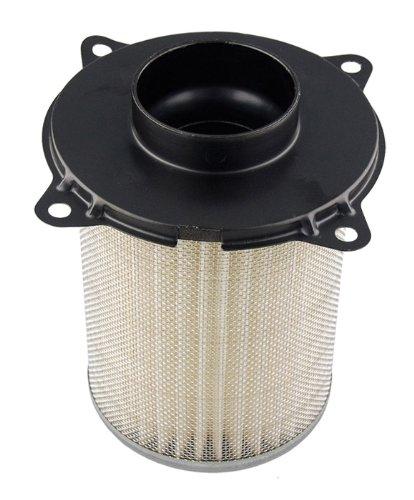 Hiflofiltro Hfa3803 Premium Oe Replacement Air Filter
