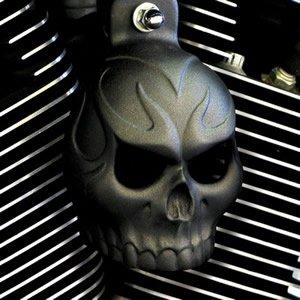Textured Black Powder Coat Evil Twin Skull Horn Cover