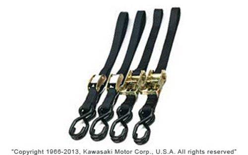 Ancra 45211-11 Black Quad Pak Tie Down
