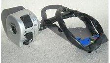 Genuine OEM VICTORY Handlebar switch L H 4011045-385