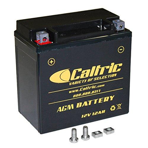 CALTRIC AGM BATTERY Fits HONDA VTX1300C VTX-1300C VTX1300R VTX1300S VTX1300T 2003-2009