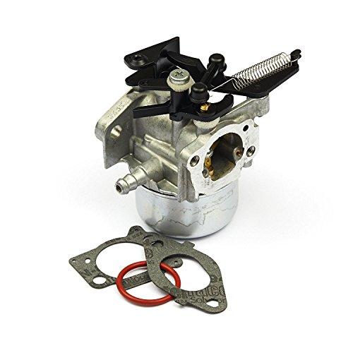 IZTOSS Briggs Stratton 796608 Carburetor Fits 111000 11P000 121000 12Q000