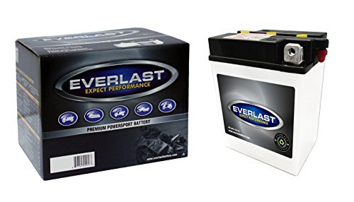 EverLast B38-6A 6V Conventional Battery with Acid Pack 4 58 L X 3 14 W X6 516 H