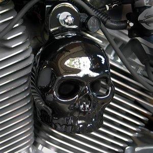 Harley Gloss Black Powder Coated Skull Horn Cover