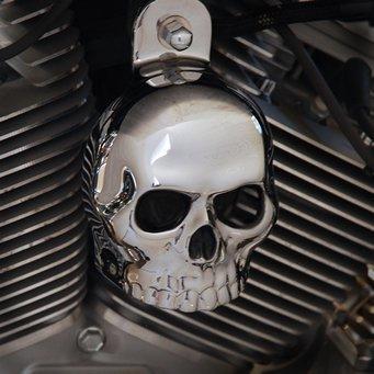 Harley Chrome Plated Skull Horn Cover