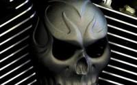 Textured-Black-Powder-Coat-Evil-Twin-Skull-Horn-Cover16.jpg
