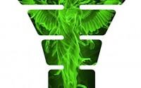 Angel-Fire-Green-3d-Gel-Motorcycle-Gas-Tankpad-Kawasaki-Ninja-Zx-Suzuki-Gsxr-Honda-Cbr-Yamaha-Yzf-Triumph-Motorcycle13.jpg