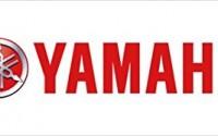 YAMAHA-STRYKER-1300-CHROME-SADDLEBAG-SUPPORT-BARS-KIT-SUPPORTS-36.jpg